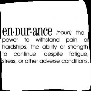 endurance-